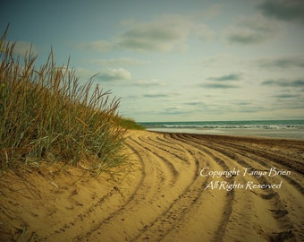 North Beach, Beach Grass, Sandy Shoreline, Great Lakes, Beach, Nautical, Lake Michigan, Wisconsin, Lakeshore, Summer, Aqua, Mint, Home Decor