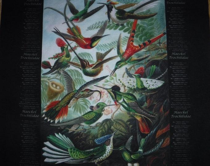 New - Custom Haeckel Trochilidae (hummingbird) cross body/shoulder bag - cotton canvas