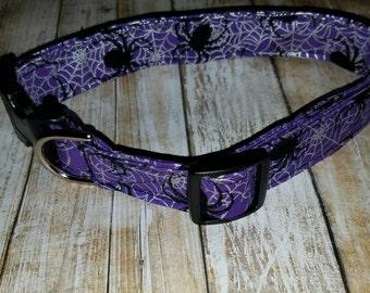 Purple Spider Halloween Dog Collar