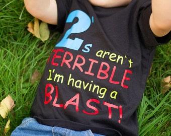 Terrible Twos,s shirt 2nd birthday, funny shirt, boys tshirt, toddler t shirt