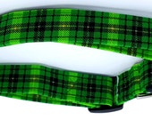 Pot Of Gold Plaid Green Gold and Black Irish St. Patricks Dog Collar