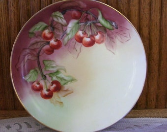 J.R. & Co. Selb Bavaria Hand Painted Plate, dated March 1911, Red Cherries on A vine, Collectors Plate, Cabinet Plate, Bavarian Plate