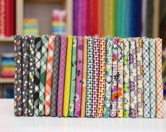 Eastham Fat Eighth Fabric Bundle by Denyse Schmidt (24 FQs complete collection)