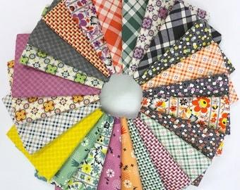 Eastham Fat Quarter Fabric Bundle by Denyse Schmidt (24 FQs complete collection)