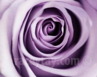 Purple Rose, Flower Photography, Paris Flower Print, Shabby Chic, Macro Flower Photo, Mauve, Pastel, Romantic
