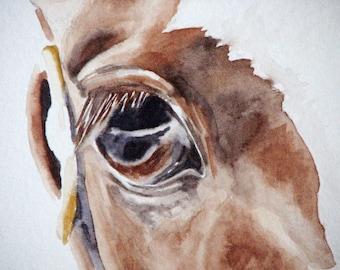 Bespoke Equestrian Eye Portrait