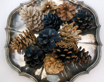Pine Cones for Decor Bleached and Indigo Dyed Assortment