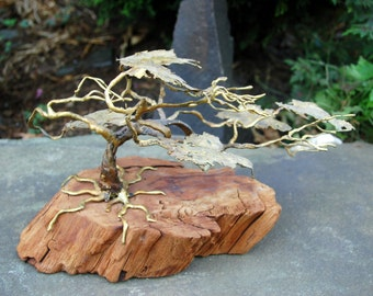 Rare Ron Bertocchi, 1970's, hand signed, Windswept, gold plated over bronze, Bonsai Tree Sculpture on a Driftwood Base ~ Excellent Condition
