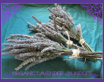 Organic Lavender Bundles - Fresh 2016 Season Harvest - Fragrant Bundles 1 - 2oz Handtied Raffia - Calming Lavender Buds - Insect Deterrent