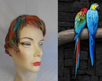 Parrot Coupling - Vintage 1950s Colourful Tones of the Rainbow Feather Fascinator Bandeau Hat