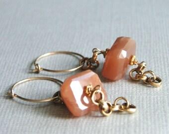 14k Gold Filled Hoop Earrings / Gemstone Earrings / Gold Accessories / Jewelry / Carnelian Earrings / 14k Gold Filled Dangle Earrings