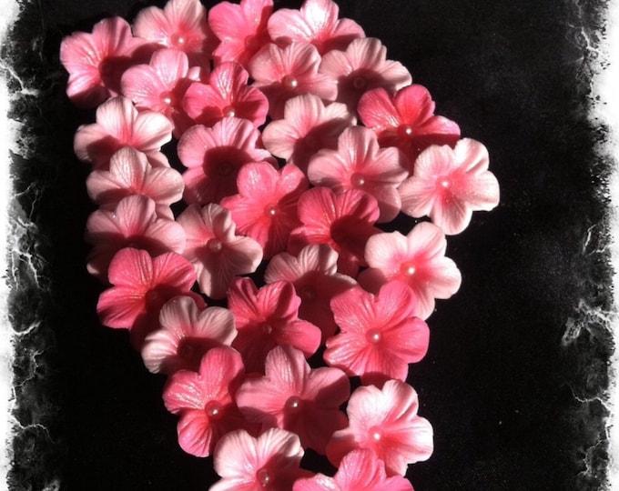 Blossom Sugar Art Cake Decorating Supplies : Sweetedibles Gumpaste and Sugar Art