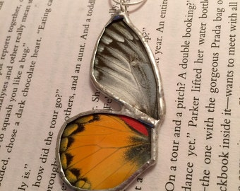 Real Butterfly jewelry, butterfly Wing Necklace, real butterfly pendant, real handmade butterfly jewerly