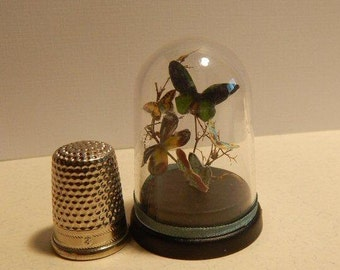Butterfly dome for your dollhouse 1/12ème