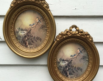 Vintage Set of 2 Gold Frame Homco Bird Pictures Great for Family Pictures