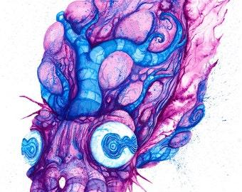 Cuttlefish - Matte Print