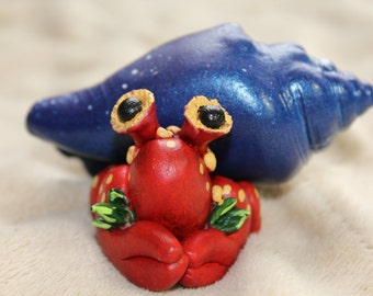 Galaxy hermit crab