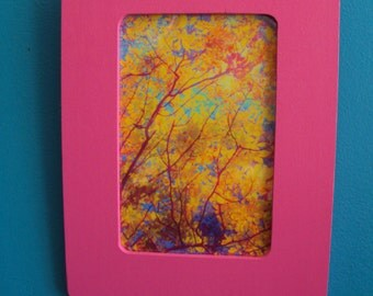 Golden Yellow Leaves on Tree Photograph/Surreal Photograph/4x6 inches/ Bright Pink Wood Frame/ 6 1/4 x 8 1/4 inches frame/Ready to Display