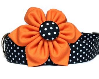 Black Orange Dog Collar with Flower, Halloween Dog Collar, Black White Polka Dot, Fall Dog Collar, Dog Collar Flower, Girl Dog Collar