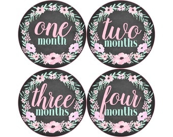 Monthly Baby Stickers, Girls First Year Photo Props, Baby Month Stickers, Baby Announcement, Monthly Photos, Baby Gift, Chalkboard (G250)