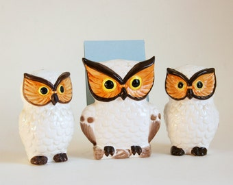 Owl Kitchen Decor: Owl Salt and Pepper Shakers, Owl Napkin Holder Mail Sorter