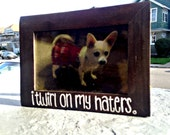 I Twirl on My Haters 4x6 Wood Stained Picture Frame
