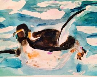 Penguin Ashore // penguin