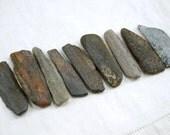 "9 ancient fossil bone sticks (2"" - 2.25"") ancient (no.76)"