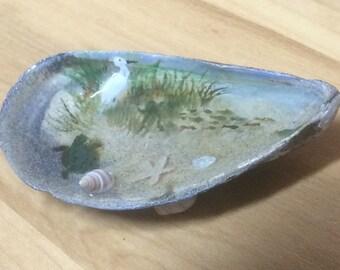 Seashell shore scene