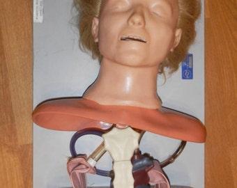 Vintage 1970 Recusci Anne Anatomical Medical Mannequin Manikan Torso Doll CPR in Case, Laerdal, Norway, Steam Punk Sculpture