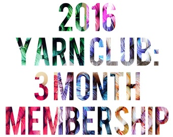 2016 Yarn Club - 3 Month Oct-Dec Membership - Exclusive Colorway