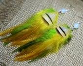 Feather Earrings - Leaves