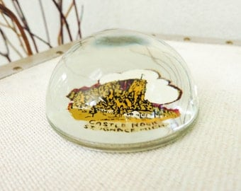 Retro Desk Accessory - Office Decor - Glass Paperweight with Magnified Decal - Michigan Souvenir - Father's Day Gift - Gift for Him