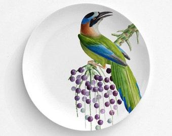 "Mot Mot Bird, Bird Plate, Melamine Plate, Vintage Bird Illustration, decorative plate, Dinner Plate, 10"" plate, bird design"