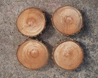 Wood Slice Blanks, 6.5 Inches, Reclaimed Wood, Wood Discs, Raw Wood, Tree Slices, Tree Branches, Wood Working, Nests and Burrows