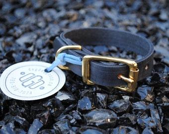 The Halfling Collar: Black & Brass Leather Dog Collar