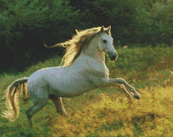 Rearing White Mare Cross Stitch Pattern Animal Series Design Instant Download PdF