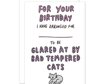 Bad Tempered Cats For Your Birthday I've Arranged For ___ To Be Glared At By Bad Tempered Cats Funny Birthday Card
