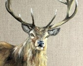 Red Deer Stag Original Oil Painting - Oil on Canvas - Animal Portrait
