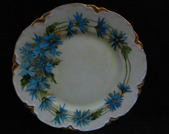 Vintage Cake Plate: Hand painted porcelain