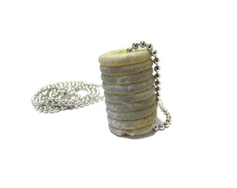 Hot Roller Too, Rare Crinoid, Crinoid Fossil Necklace, Raw Crinoid, Tennessee Riverbanks, 24 In or less Chain, Stainless Steel, Petite Chain