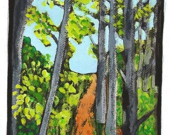 The Path Ahead//TIlden Trail// Nature// Berkeley California//digital print//trees//trail