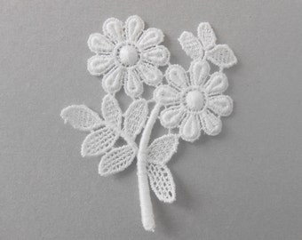 Cotton white flowers of 6 x 5 cms
