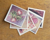 Greeting Card Set of 5, Save 20%!