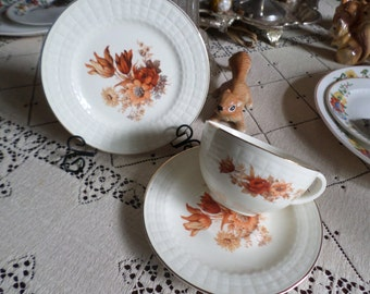Vintage Crooksville Autumn Leaves Design Tea Cup & Saucer with Dessert Plate