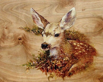 Spring Fawn White Tail Deer