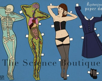Anatomical Paper Doll