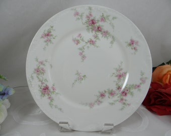 1900s Antique Theodore Haviland  Limoges France Luncheon or Salad Plate - Charming - Schleiger 1235