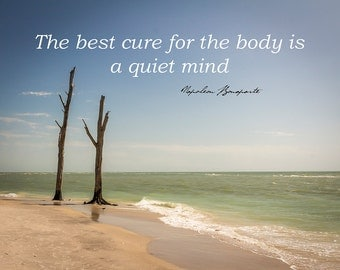 Quotes Text Type - The Best Cure for the body is a Quiet Mind -Inspirational Sayings - Photography - Fine Art Photography