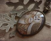 Owls cameo